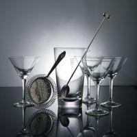 Набор для приготовления коктейлей Balvi Dry Martini 24693