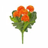 БАРХАТЦЫ 5 цветов на ветке оранжевый