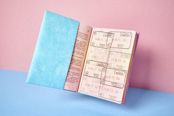 Обложка на паспорт - NEW W NC-010