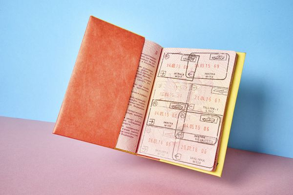 Обложка на паспорт - NEW A