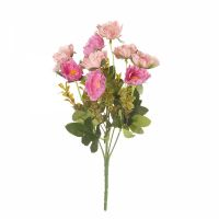 Хризантема (5 цветов)  пудра