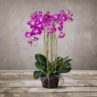 Искусственная «Орхидея» SILK-KA 125 см 95431