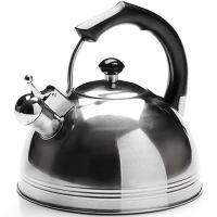 Чайник Mayer&Boch металлический 4,8 л со свистком 26168