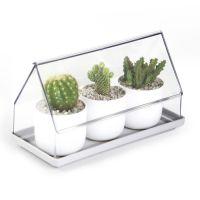 Лоток для выращивания растений Micro Green House прозрачный QL10310-CL-GN