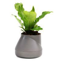Горшок цветочный Hill pot маленький серый QLX20001-GY