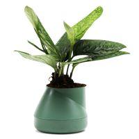 Горшок цветочный Hill pot маленький зеленый QLX20001-GN