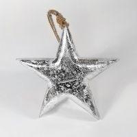 Фигурка декоративная Snow Star, подвесная, 15х15х2,5 см en_ny0014