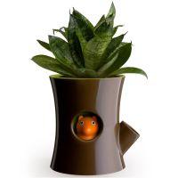Горшок самополивающийся Log&Squirrel коричневый-зеленый QL10075-BN-GN