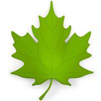 Подпорка для двери Autumn зеленая QL10072-GN