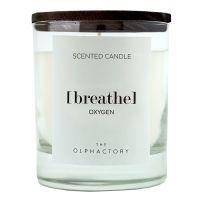 Свеча ароматическая the olphactory breathe black Кислород 40 ч VV402OXBTO