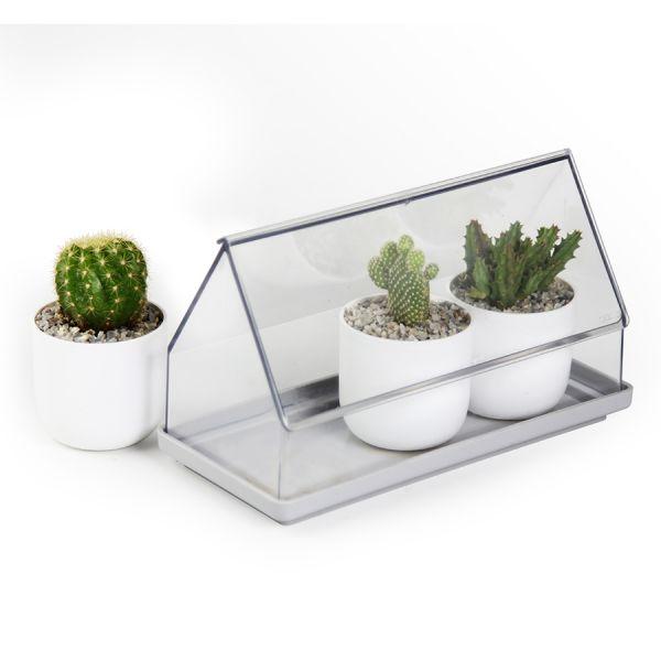 Лоток для выращивания растений micro green house прозрачный QL10310-CL-GY